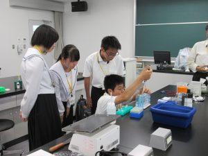 地域高校との連携活動の写真